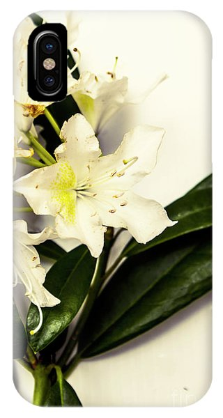 Japanese Flower Art IPhone Case