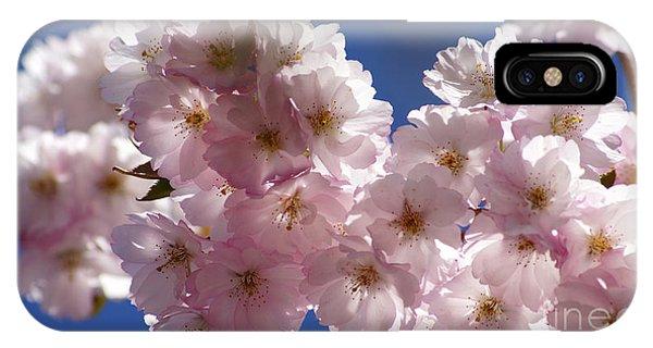 Japanese Flowering Cherry Prunus Serrulata IPhone Case