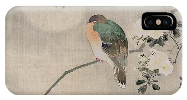 Pigeon iPhone Case - Japanese Silk Painting Of A Wood Pigeon by Japanese School