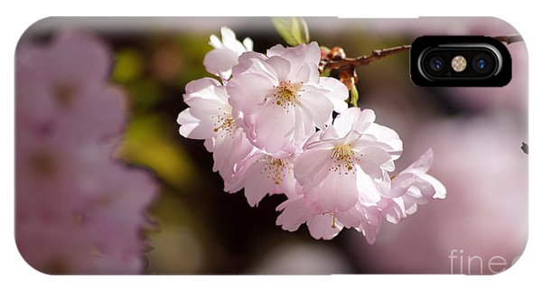 Japanese Wild Cherry IPhone Case