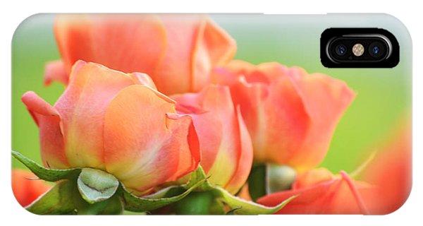 Jardin De Rosas IPhone Case