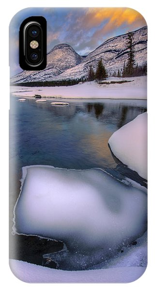 Jasper In The Winter IPhone Case