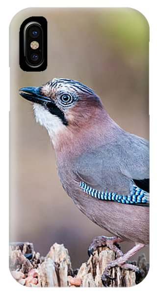 Jay In Profile IPhone Case