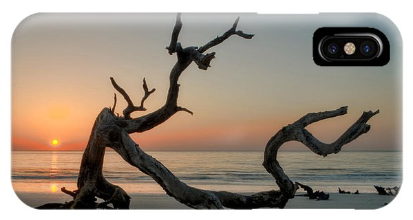 Jekyll Island Driftwood IPhone Case