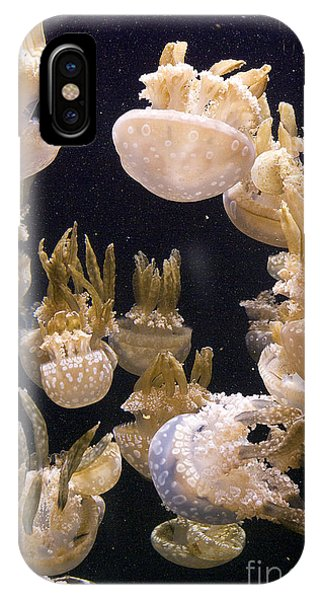 Jelly Parade IPhone Case