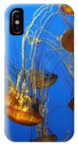 Jellyfish Family IPhone Case
