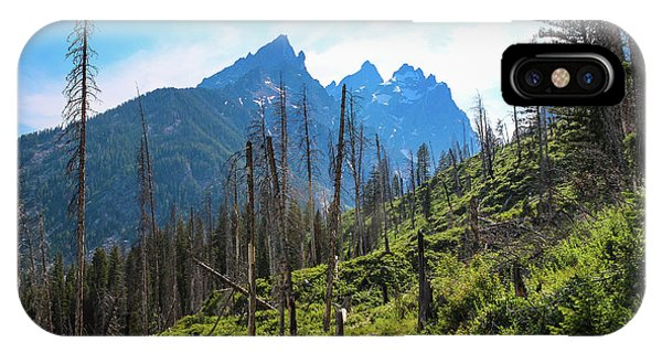 Jenny Lake Trail IPhone Case