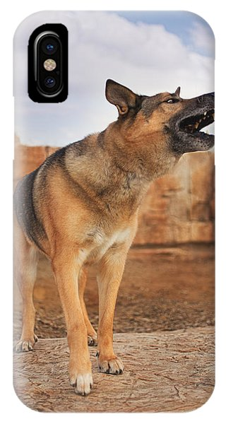 Jerry Lee  IPhone Case