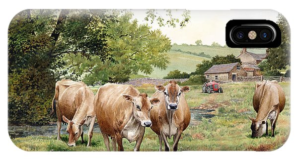 iPhone Case - Jersey Cows by Anthony Forster