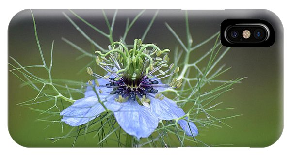 Jester's Hat Flower IPhone Case