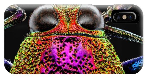 Jewel Beetle 3x IPhone Case
