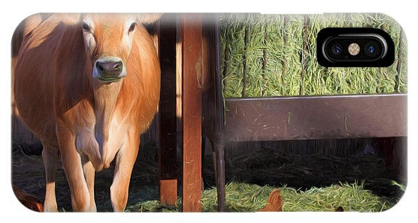 Barnyard Animals iPhone Case - Joan And Company by Donna Kennedy