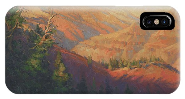Northwest iPhone Case - Joseph Canyon by Steve Henderson