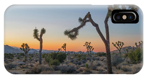 Desert iPhone Case - Joshua Sunset by Joseph Smith