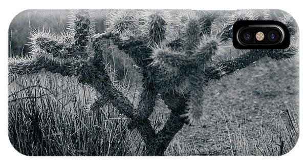 Joshua Tree Cactus IPhone Case
