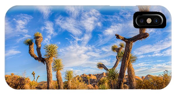 Joshua Tree Dawn IPhone Case