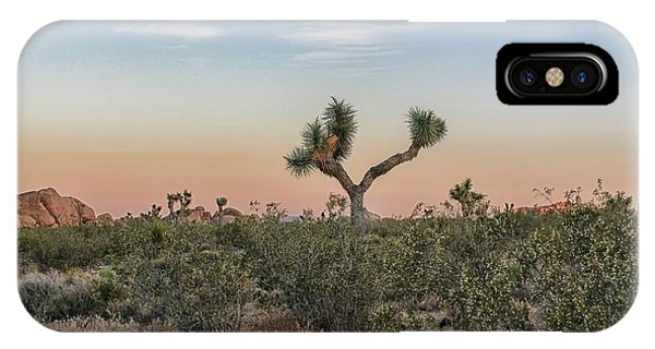 Joshua Tree Evening IPhone Case