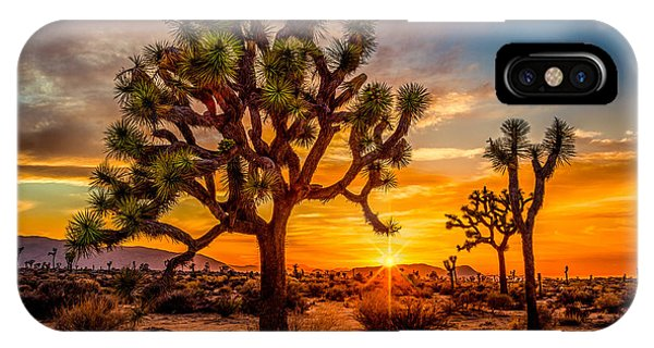 Joshua Tree Glow IPhone Case