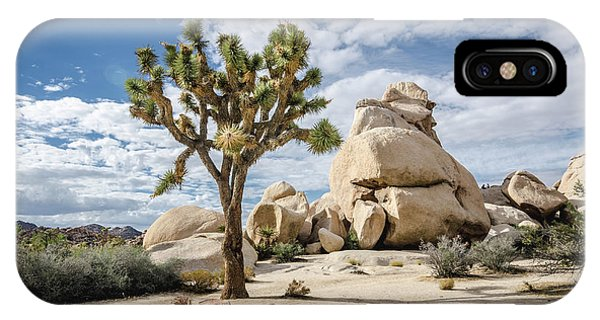 Joshua Tree No.2 IPhone Case