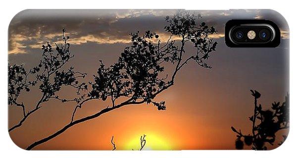 Joshua Tree Sunset IPhone Case