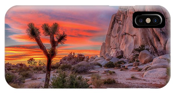 Joshua Tree Sunset IPhone Case