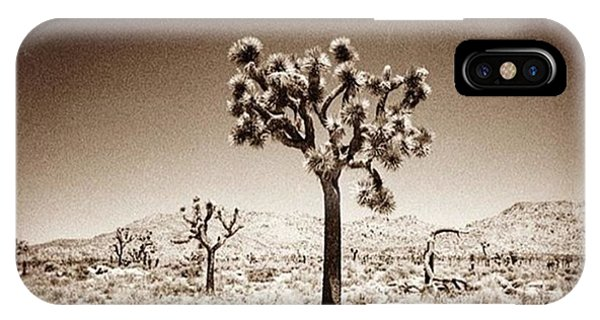 Fineart iPhone Case - Joshua Tree Taken With A #holga  #film by Alex Snay