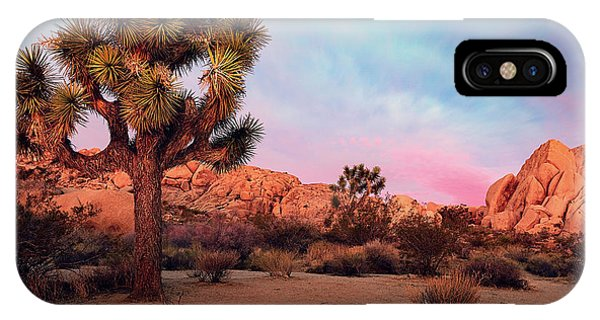 Joshua Tree With Dawn's Early Light IPhone Case