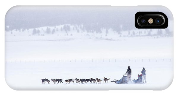 Sled Dog iPhone Case - Joy Ride by Evelina Kremsdorf