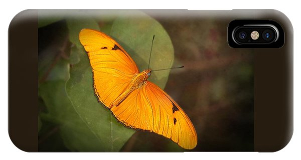Julia Dryas Butterfly-2 IPhone Case