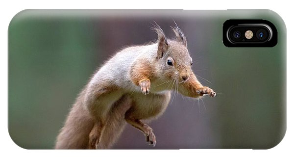 Jumping Red Squirrel IPhone Case