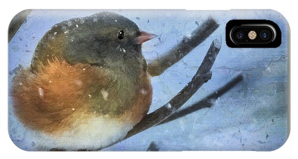 Junco On Winter Day IPhone Case