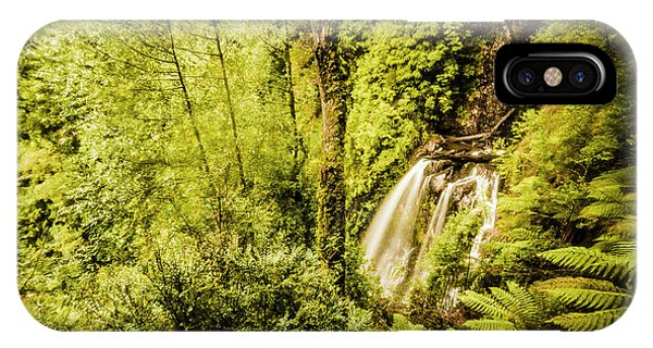 Jungle iPhone Case - Jungle Steams by Jorgo Photography - Wall Art Gallery