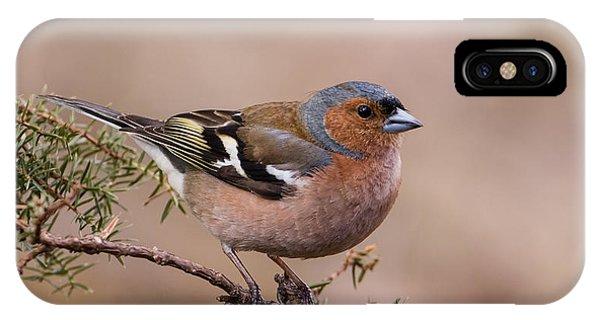Juniper Bird IPhone Case