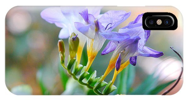 IPhone Case featuring the photograph Just A Freesia by Lance Sheridan-Peel
