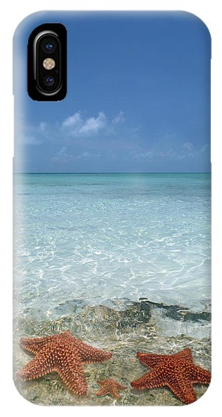 Carribbean iPhone Case - Just Between Us by Betsy Knapp