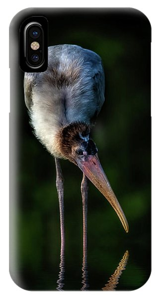 Just Browsing IPhone Case