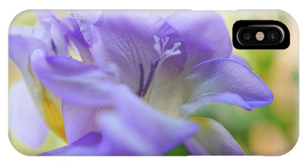 IPhone Case featuring the photograph Just Freesia's by Lance Sheridan-Peel