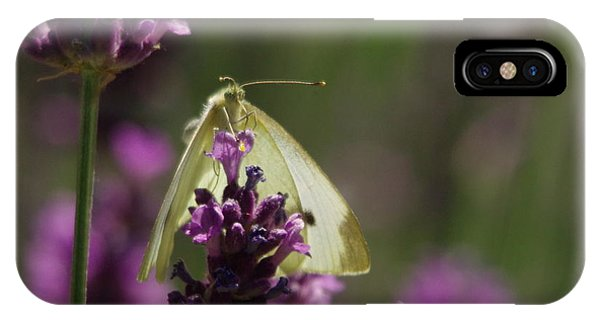 Little Things iPhone Case - Just Hanging On by Jeff Swan