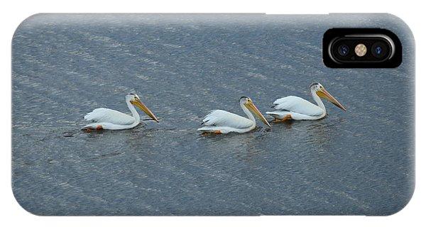 Triple Pelicans Lake John Swa Co IPhone Case
