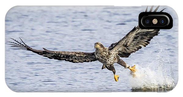 Juvenile Bald Eagle Fishing IPhone Case