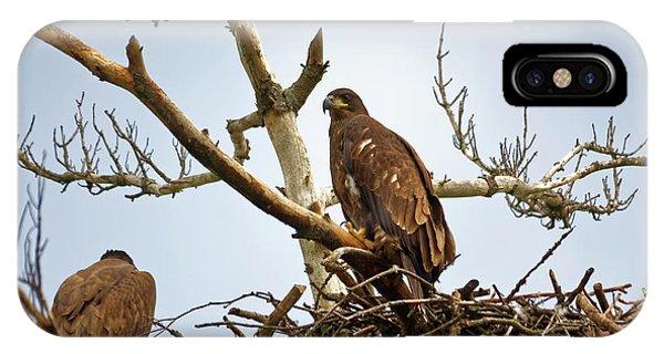 Juvenile Eagles IPhone Case