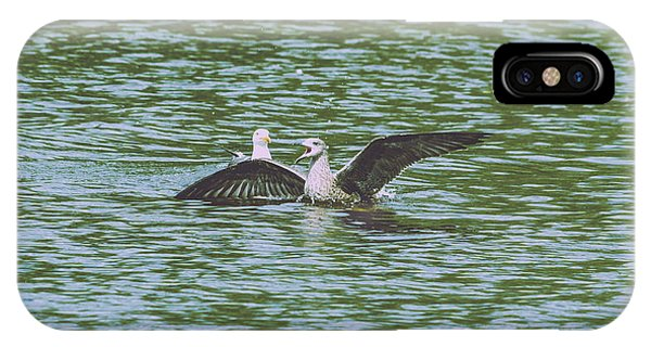 IPhone Case featuring the photograph Juvenile Seagull In A Water by Jacek Wojnarowski