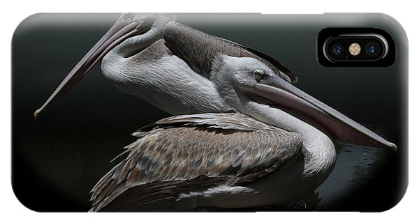 Juxtaposition - Pelicans IPhone Case