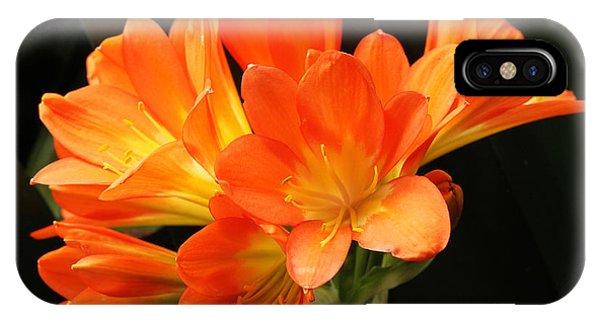 Kaffir Lily #2 IPhone Case
