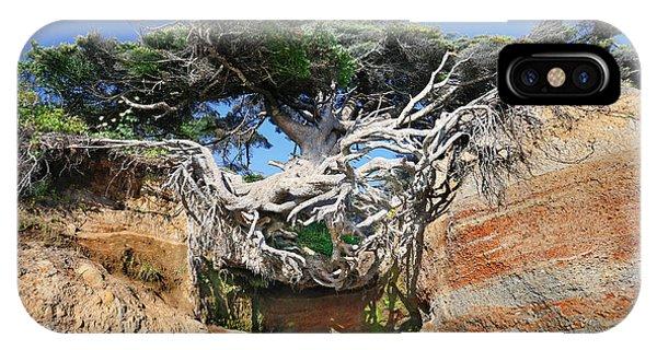 Kalaloch Tree Of Life IPhone Case