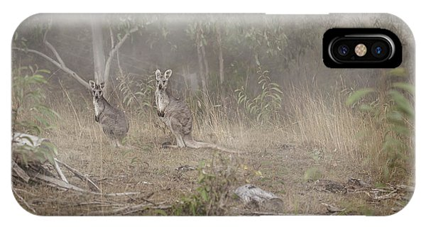Hunting iPhone Case - Kangaroos In The Mist by Az Jackson