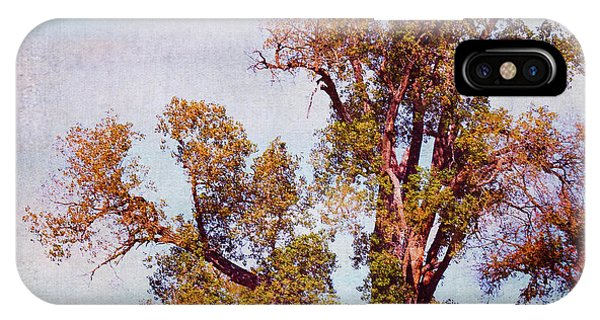 IPhone Case featuring the photograph Kansas Autumn Lane by Anna Louise
