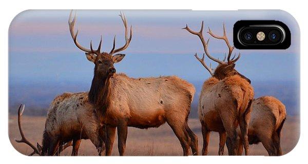 Kansas Elk 2 IPhone Case