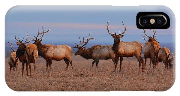 Kansas Elk Panarama IPhone Case