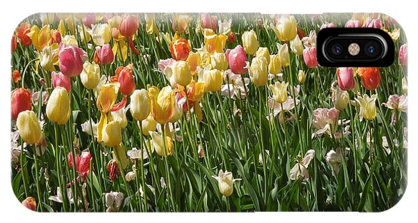 Kathy's Tulips IPhone Case